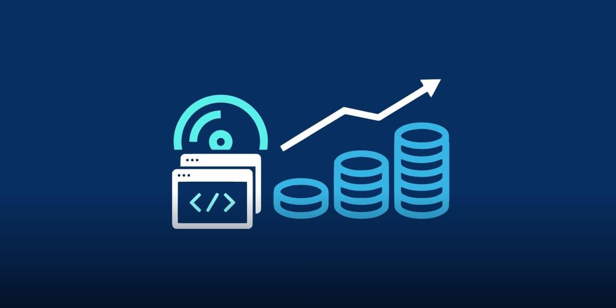 Software budgeting
